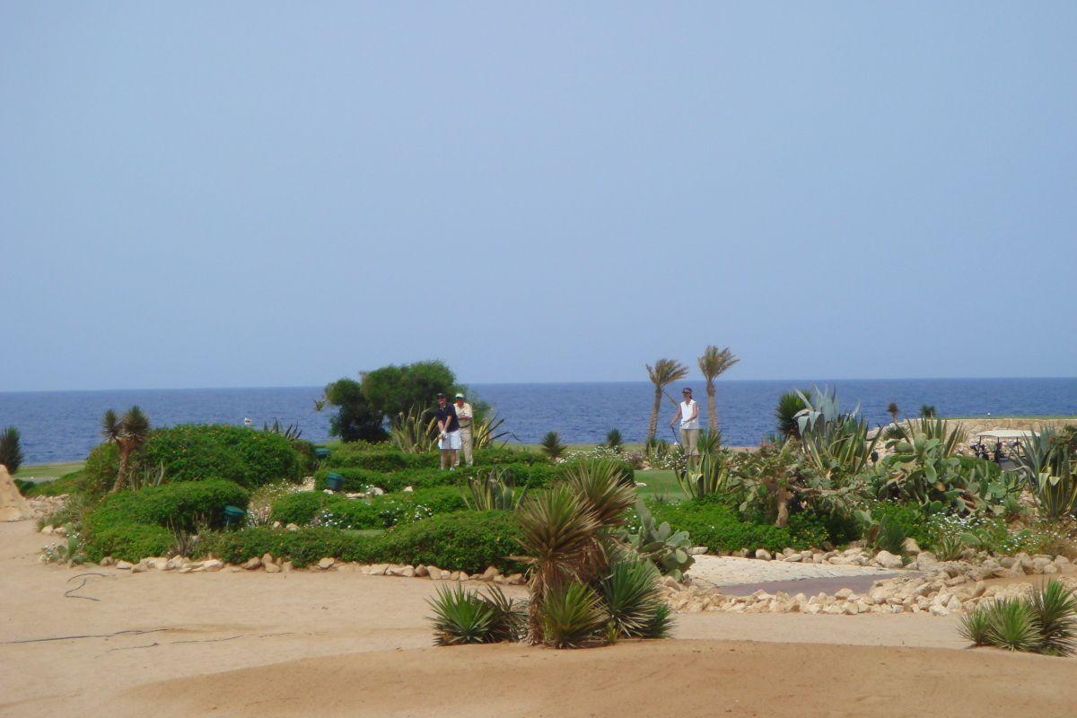 InternetEgypt-059