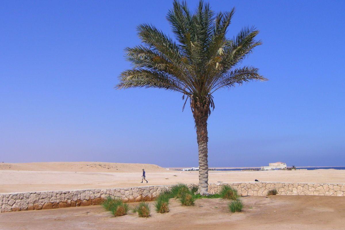 InternetEgypt-2007-090